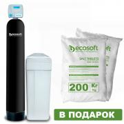 Filter deferrization and softening of water Ecosoft FK1252CEMIXA