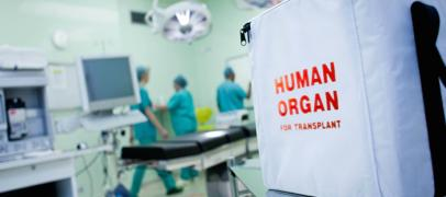 Transplantation/organ transplantation in Turkey. Expensive